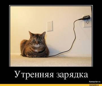 http://s4.uploads.ru/t/zCRq9.jpg