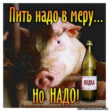 http://s4.uploads.ru/t/zkVKF.jpg