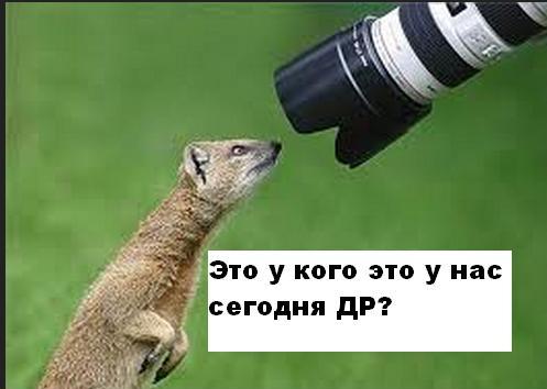 http://s4.uploads.ru/tPYD5.jpg
