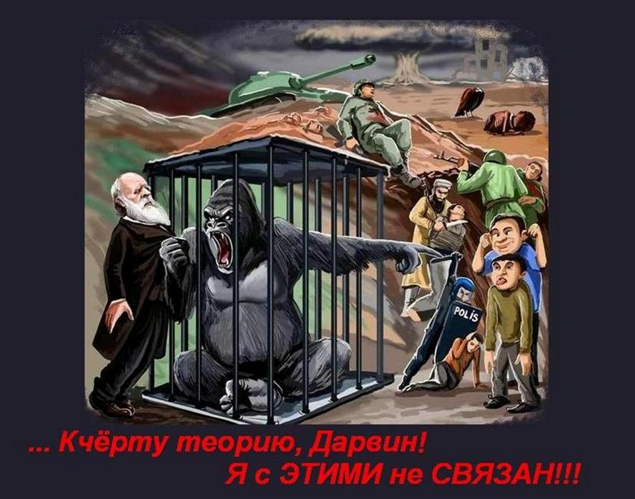 http://s4.uploads.ru/ufOxo.jpg