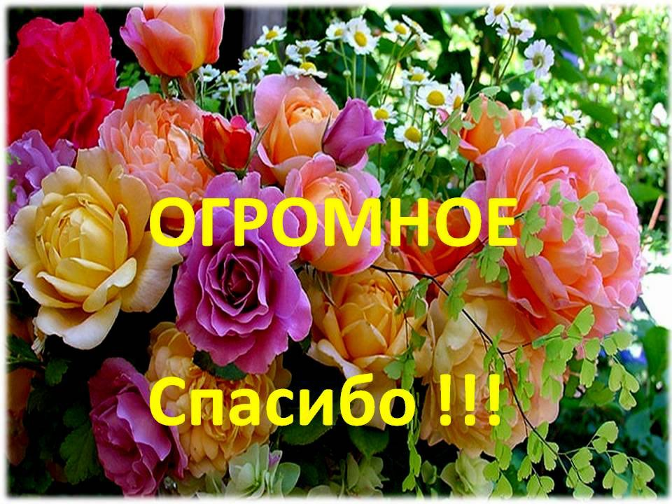 http://s4.uploads.ru/vdWFJ.jpg