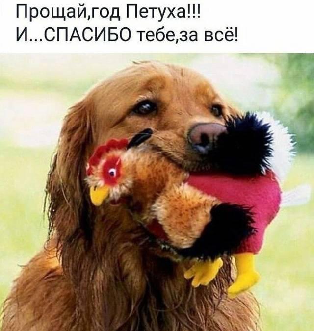 http://s4.uploads.ru/wNdpV.jpg