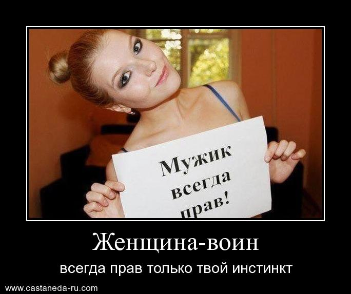 http://s4.uploads.ru/yMSVX.jpg