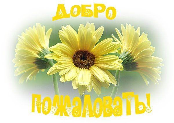 http://s4.uploads.ru/0ljBC.jpg
