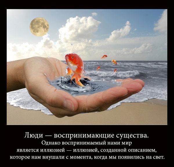http://s4.uploads.ru/6Grv1.jpg