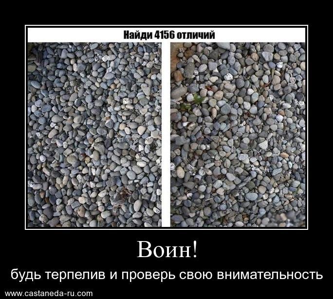 http://s4.uploads.ru/A4biD.jpg