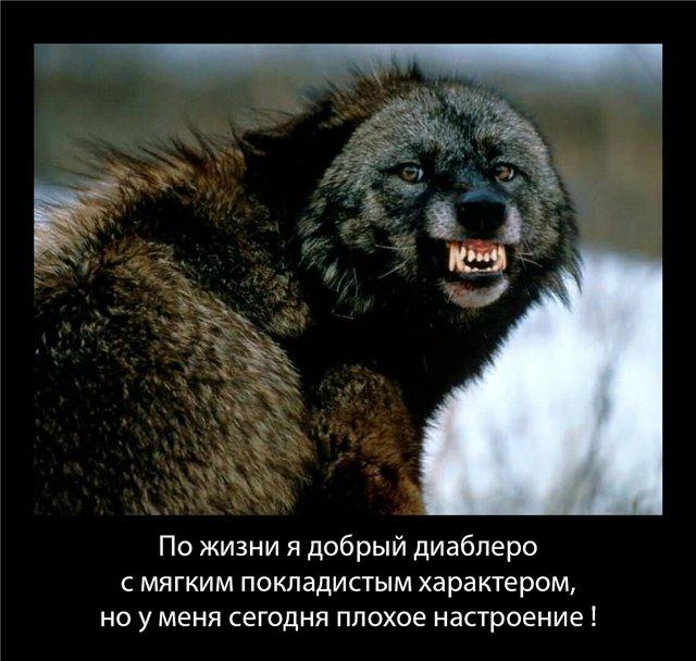 http://s4.uploads.ru/DadjX.jpg
