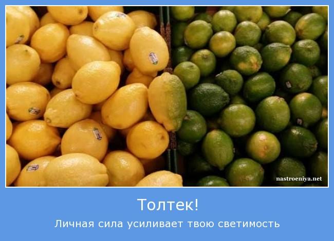 http://s4.uploads.ru/M59Rk.jpg