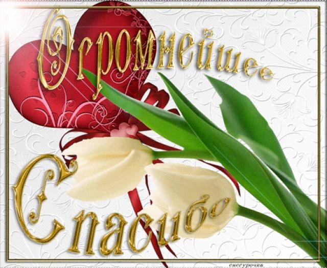 http://s4.uploads.ru/MDrnh.jpg