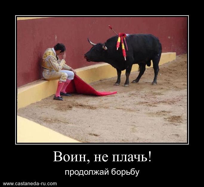 http://s4.uploads.ru/QcB2S.jpg