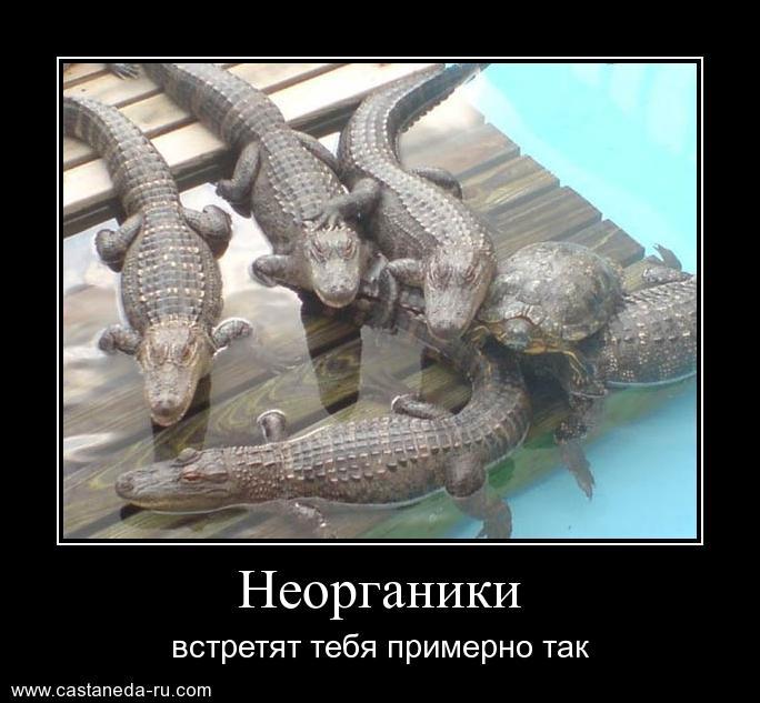 http://s4.uploads.ru/UHhZA.jpg