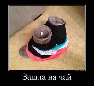 http://s4.uploads.ru/t/0QjSP.jpg