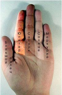 http://s4.uploads.ru/t/BNZ5m.jpg