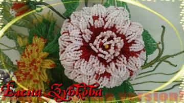 http://s4.uploads.ru/t/C735O.jpg