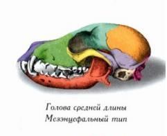 http://s4.uploads.ru/t/EGPRC.jpg