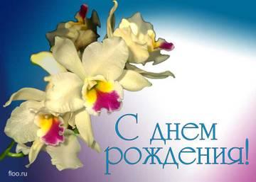 http://s4.uploads.ru/t/ESPTp.jpg