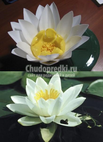http://s4.uploads.ru/t/Eyb6V.jpg
