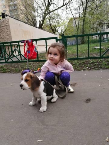 http://s4.uploads.ru/t/GBAYv.jpg
