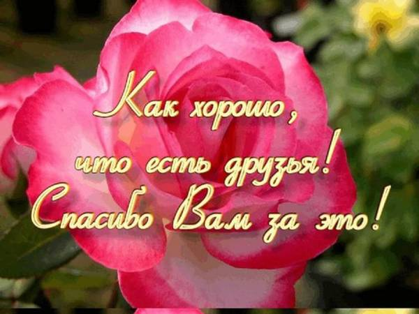 http://s4.uploads.ru/t/GJAMk.jpg