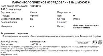 http://s4.uploads.ru/t/MNcyW.jpg