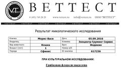 http://s4.uploads.ru/t/VjiQd.png