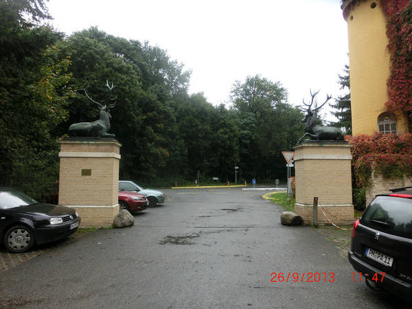 http://s4.uploads.ru/t/WDrC4.jpg