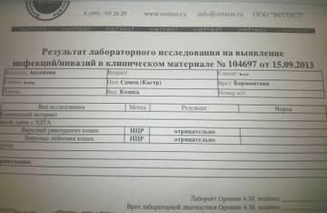 http://s4.uploads.ru/t/Y7oim.jpg
