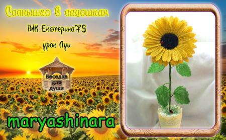 http://s4.uploads.ru/t/hWgU0.jpg