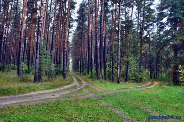 http://s4.uploads.ru/t/k0las.jpg