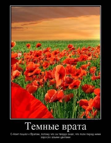 http://s4.uploads.ru/t/koqAw.jpg