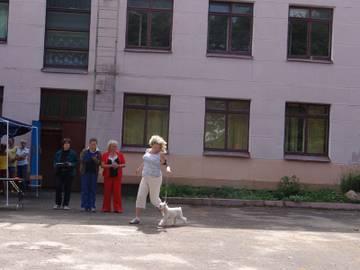 http://s4.uploads.ru/t/rQMiG.jpg