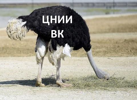 http://s4.uploads.ru/t/tlWPB.png