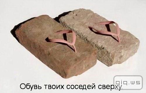 http://s4.uploads.ru/wT6zx.jpg
